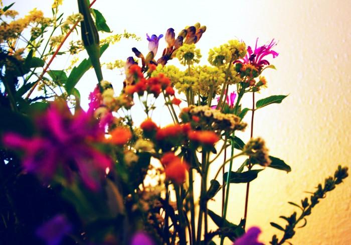 bouquet15v