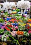About the Los Angeles Flower District