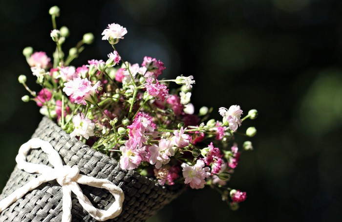 Statice, Feverfew, Baby's Breath, and More: Festive Filler Flowers that Stand on Their Own